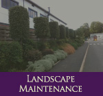 HEC Landscape Maintenance
